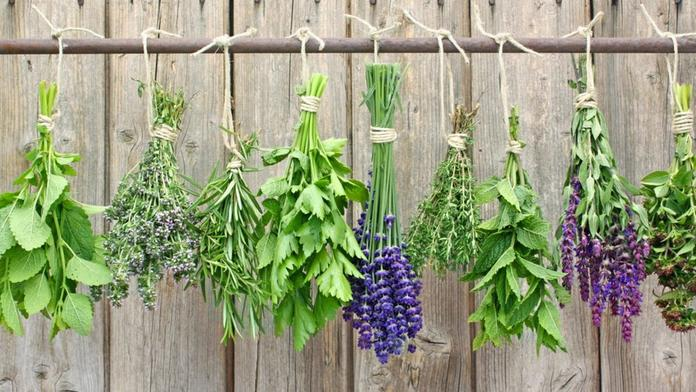 Drying Herbs sechage plantes aromatiques