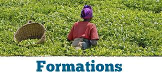 formations agriculture durable