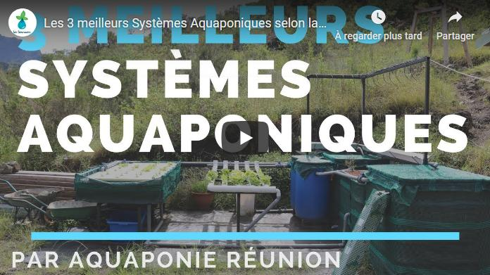 systemes aquaponique fao